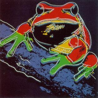frog.jpg!Large